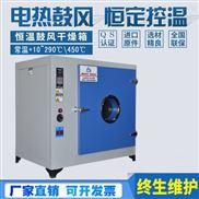 电热鼓风干燥箱恒温箱高温老化箱气候箱烤箱