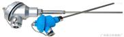 工业温度传感器CRW001