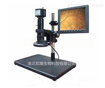动物手术实验器材 手术显微镜 供应
