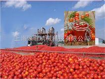 高产番茄酱加工生产线