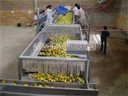 芒果原漿生産線