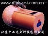 中子剂量当量仪ZH02-BH3105